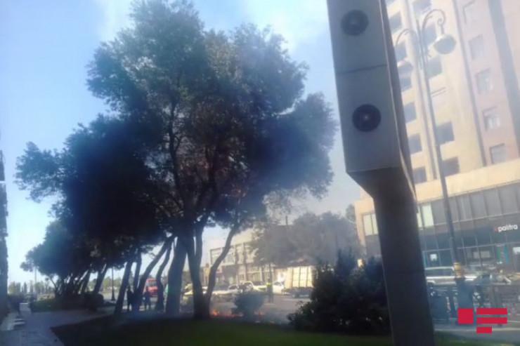Bakıda yanan ağac